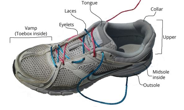 image of a running shoe with labels of all the different areas of the shoe